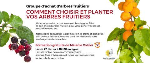 Formation gratuite sur les arbres fruitiers